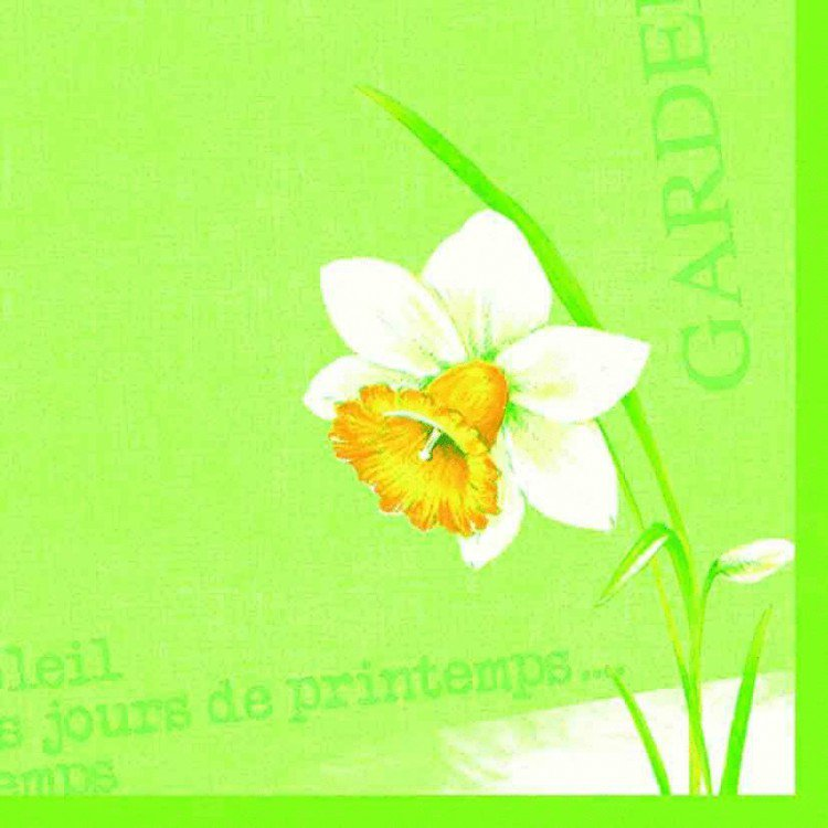 Ubrousek 40x40 DNL Spring day 50ks   Duni - Ubrousky, kapsy na příbory - Dunilin 40x40