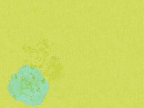 Prostírka 30x40 Endless Sum.Green 100ks | Duni - Ubrusy, šerpy, prostírky - Prostírky & podložky dortové