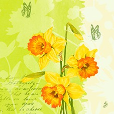 Ubrousek 40x40 3V Spring Flowers 250ks | Duni - Ubrousky, kapsy na příbory - 3 vrstvé ubrousky