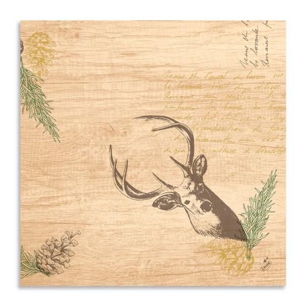Ubrousek 40x40 Dsoft My Deer 60ks | Duni - Ubrousky, kapsy na příbory - Airlaid 40x40